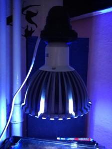 Beleuchtung Nanoaquarien